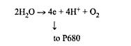 proses-penyerapan-p680