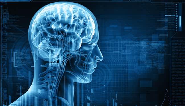 Apakah Gen Mempengaruhi Kecerdasan IQ Seseorang ?