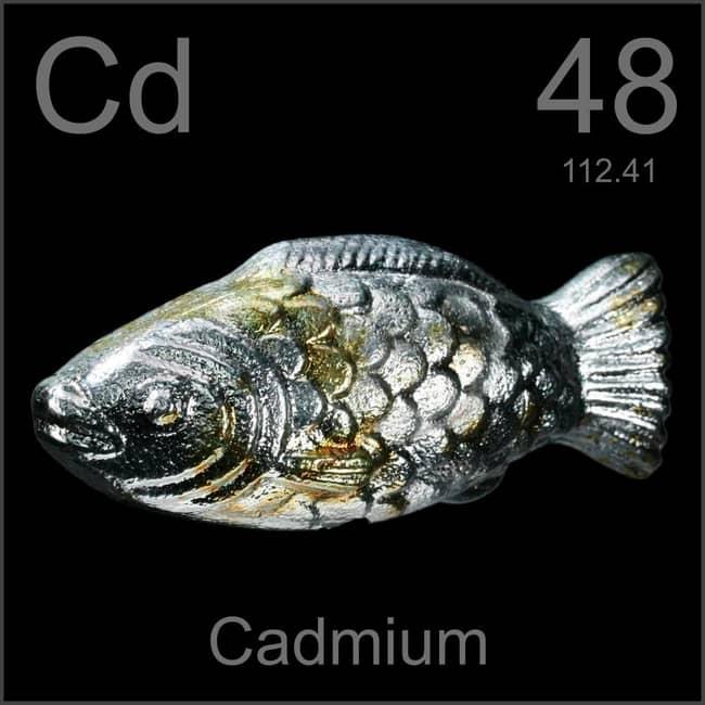 Kadmium (Cd) : Pengertian, Sumber Dan Manfaat Kegunaan